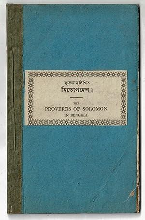 bible bengali - AbeBooks