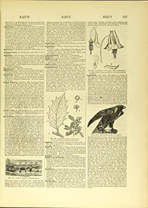 Zell's popular encyclopaedia. A universal dictionary of English language, science, literature ...