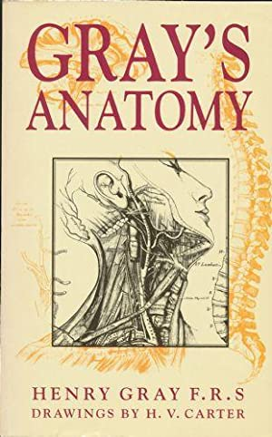Gray's Anatomy: Anatomy, Descriptive and Surgical: Gray, Henry F.R.S.