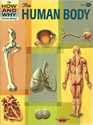 The How And Why Wonder Book of The Human Body: Martin Keen, Editorial Production by Donald D. Wolf
