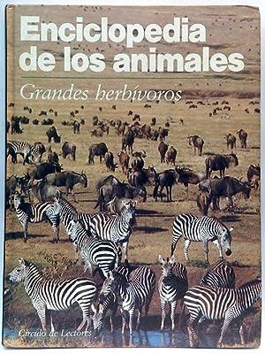 Enciclopedia de los Animales. Grandes herbívoros: Equipo Editorial