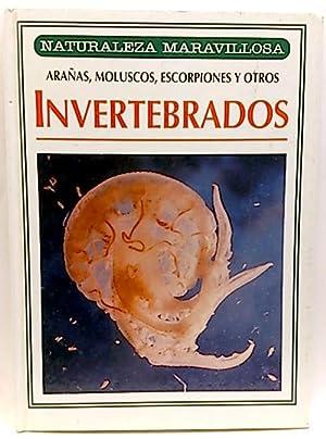 Naturaleza maravillosa. Invertebrados, Arañas, moluscos, escorpiones y otros: Carassiti, ...