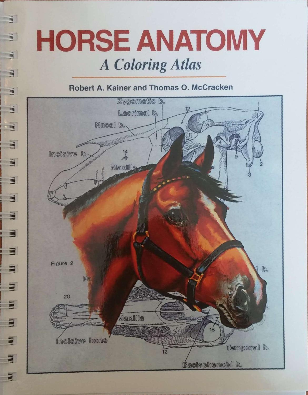Atlas Anatomy Horse - AbeBooks