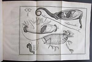 Memoires de l'Academie Royale des Sciences: Memoires pour servir a l'histoire naturelle ...