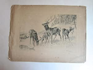 Original Ink Drawing of Four Elk: Beard, J. [James]