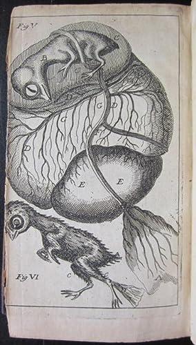 La structure du ver a soye, et de la formation du poulet dans l'oeuf.: MALPIGHI, Marcelli