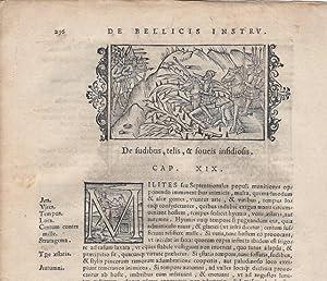 """Four printed leaves from Olaus Magnuson, """"Historia de Gentibus Septentrionalibus"""": ..."""