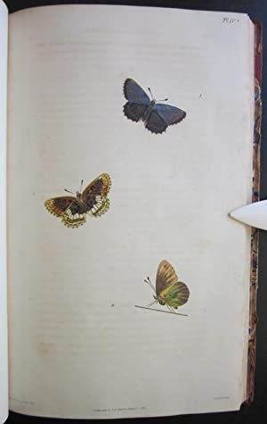 Illustrations of British Entomology; or, A Synopsis of Indigenous Insects: Containing Their Generic...