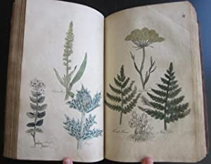 The Family Herbal, or An Account of All Those English Plants, Which are Remarkable for Their ...
