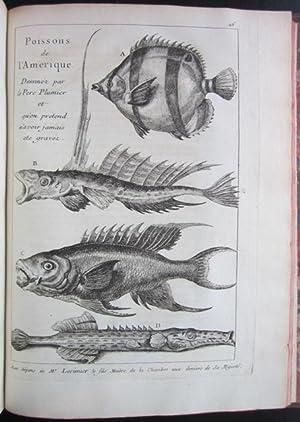 L�Historie Naturelle Eclaircie Dans Une De Ses Parties Principales, L�Oryctologie, Qui Traite Des ...