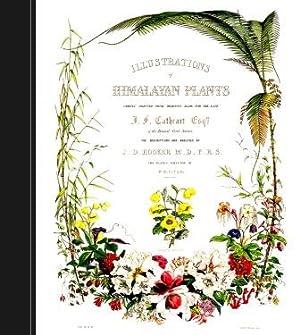 Illustrations of Himalayan Plants: Joseph Dalton Hooker