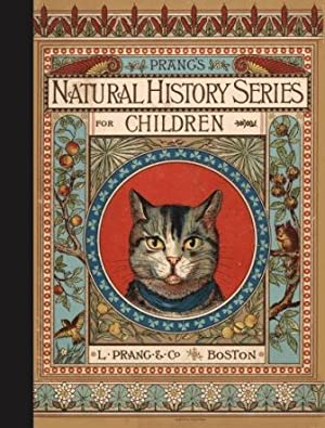 Cat Family (Prang's Natural History Series for Children): N. A Calkins