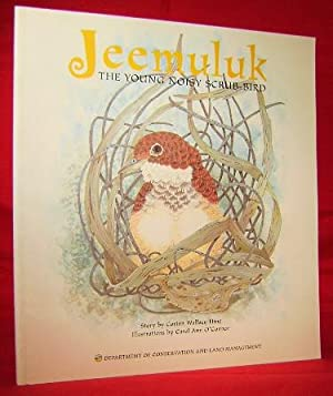 Jeemuluk the Young Noisy Scrub-Bird