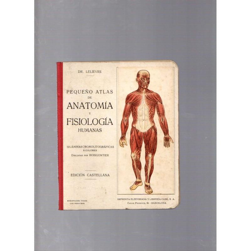 pequeño atlas anatomia fisiologia humanas de lelievre - Iberlibro