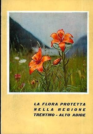 La flora protetta nella regione Trentino -: GRETTER, Italo -