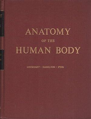 Anatomy of the human body.: LOCKHART, R. D.