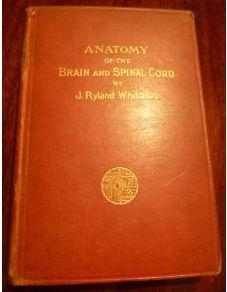 Anatomy of the brain and spinal cord: Whitaker, Joseph. Ryland