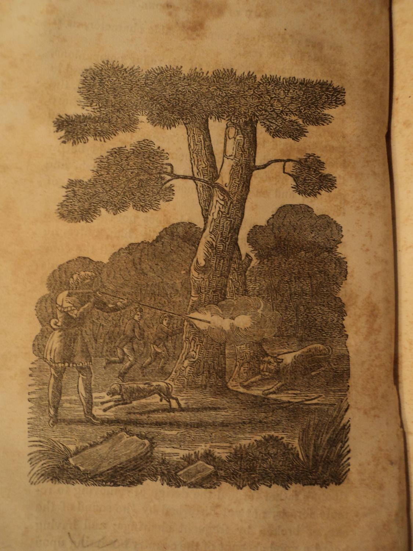 1850 Daniel Boone Frontiersman Kentucky Wilderness Road Appalachian: Boone, Daniel, — 1734-1820. / ...