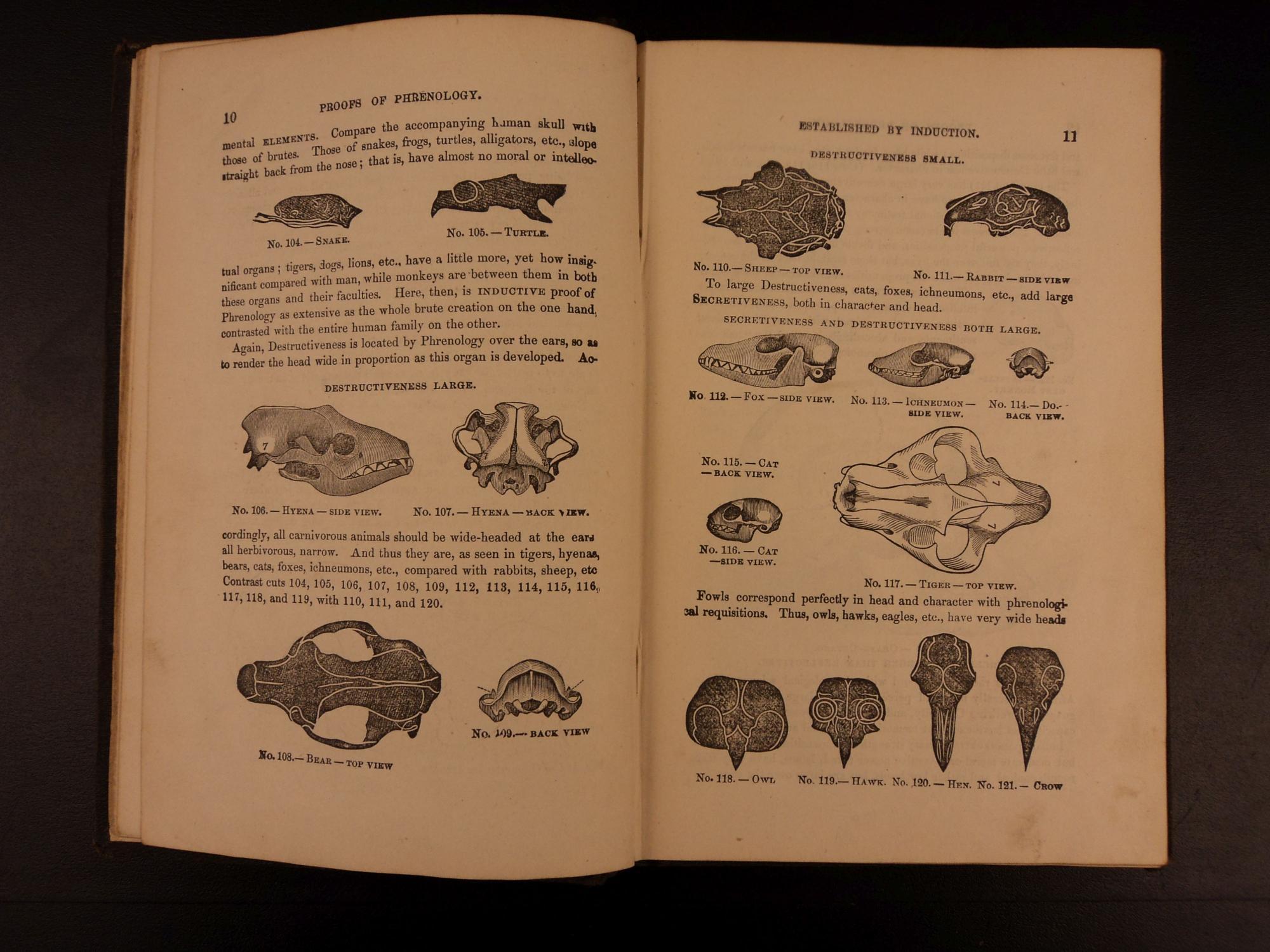 1869 1st ed Practical Phrenology Metaphysics Brain Anatomy Fowler ...