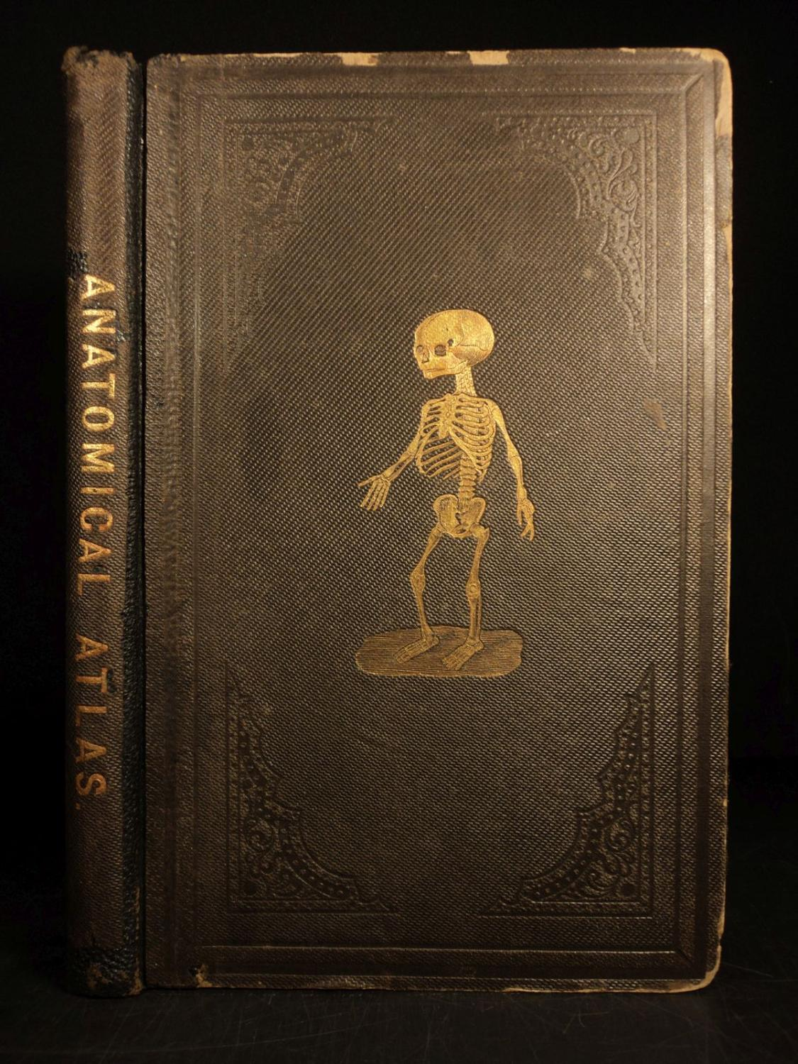 1859 Anatomical Atlas Illustrated Human Anatomy Bone Tissue