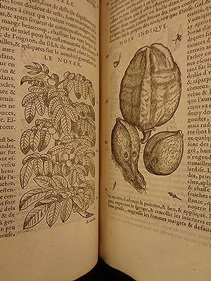1579 Mattioli HERBAL Illustrated Botany Materia Medica Medicine Dioscorides: Pietro Andrea Mattioli...