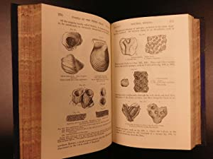 1871 EXQUISITE Charles Lyell Geology EVOLUTION Darwin Fossils + Provenance: LYELL, Charles