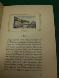 Goethe in Karlsbad.: Puchtinger, Franz: