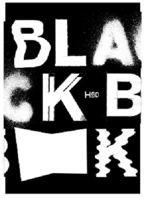 Blackbooks: Graß, Tino .
