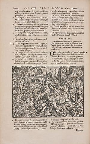 Biblia ad vetustissima exemplaria nunc recens castigata.: Amman, Jost.