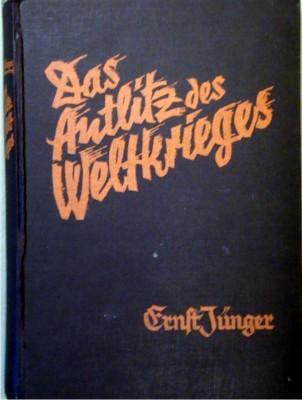 Das Antlitz des Weltkrieges. Fronterlebnisse deutscher Soldaten.