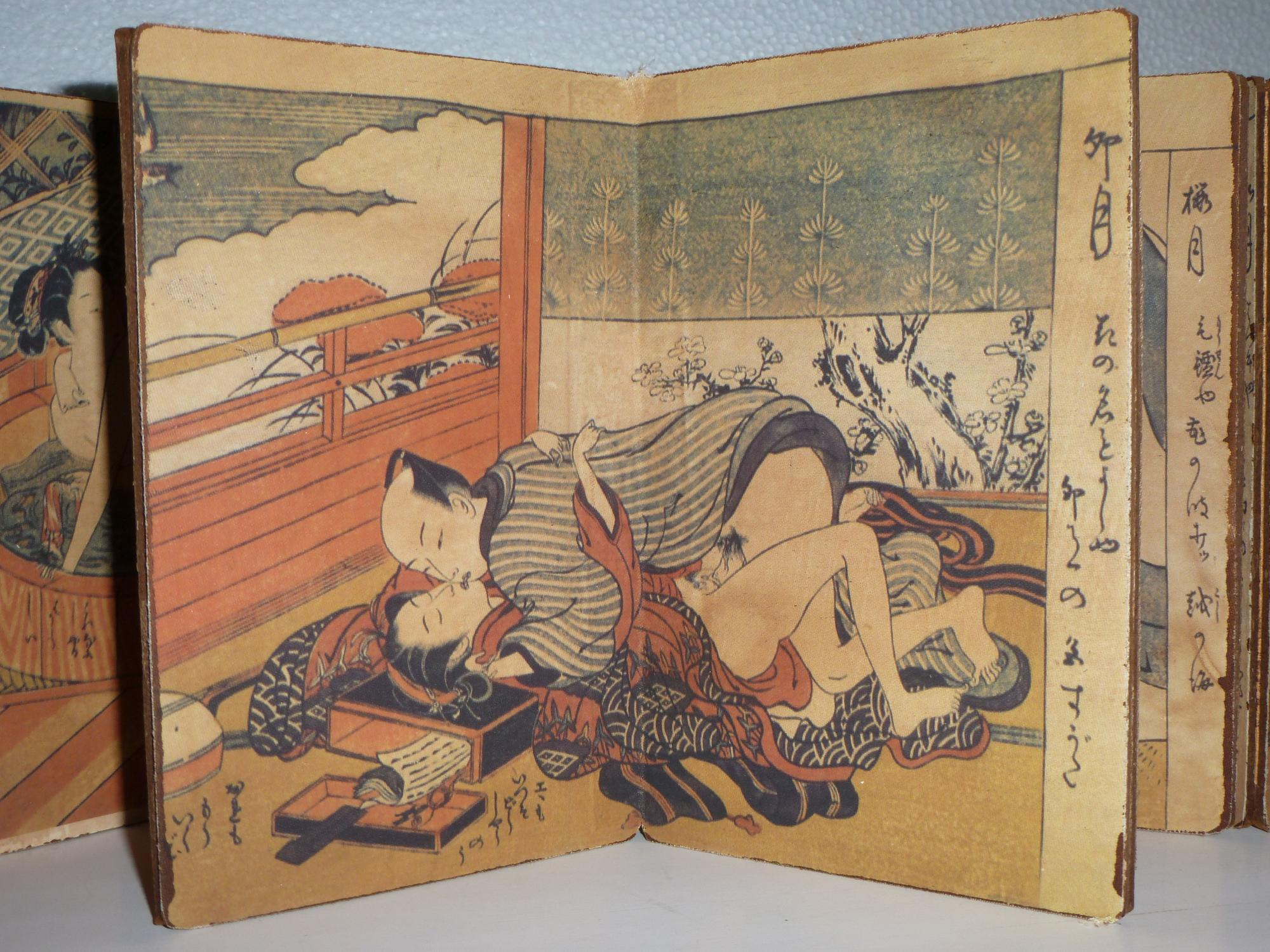 Chinese Erotica, Vintage Chinese Pillow Book, Shunga, C By -9343