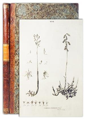 Icones plantarum Helvetiae, ex ipsius Historia stirpium: HALLER, Albertus von