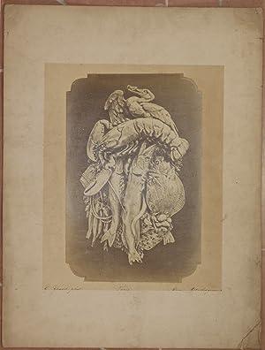 LE POISSON N. 103 THEOPHILE HINGRE G. GRAVET PHOT. PARIS RUE MONTESQUIEU, 6,