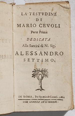 LA TESTUDINE DI MARIO CEVOLI,: MARIO CEVOLI