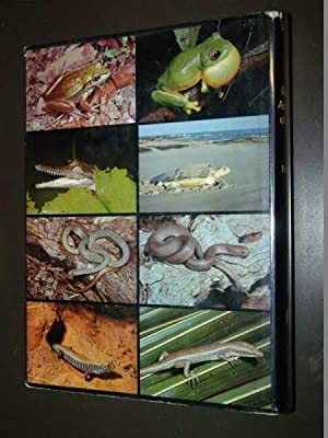 Reptiles & Amphibians of Australia: Cogger, Harold
