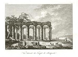Vue latérale du Temple de Metaponte: Saint - Non