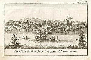 La Città di Piombino, Capitale del Principato.: Salmon