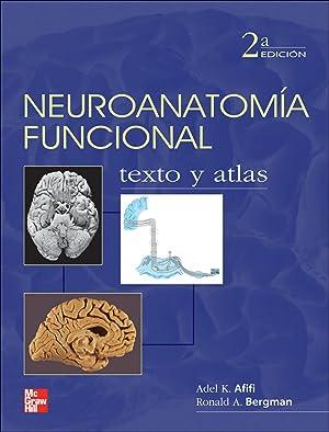 Neuroanatomia funcional: Afifi