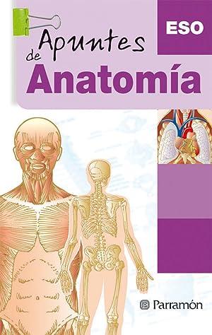 Anatomía: Cassan Tachlitzky, Adolfo/León,