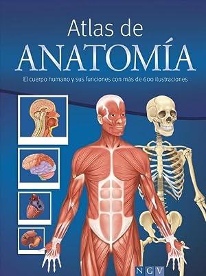 9783625006114: Atlas De Anatomía - IberLibro: 3625006111