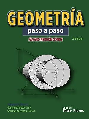 Geometria paso a paso geometria proyectiva y: Rendon Gomez, Alvaro