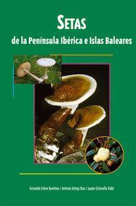 Setas de la penÍnsula ib�rica e islas: Vv.Aa
