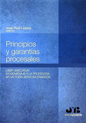 Principios y garantías procesales.: Picó i Junoy,