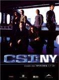 CSI: NY - Season 1.1 (3 DVDs): Sinise, Gary, Melina Kanakaredes und Carmine D. Giovinazzo: