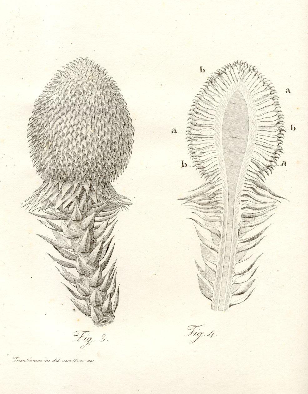 Zielstrebig 1 Kreuzer 1869 Baden-durlach Kleinmünzen & Teilstücke Münzen Altdeutschland Bis 1871