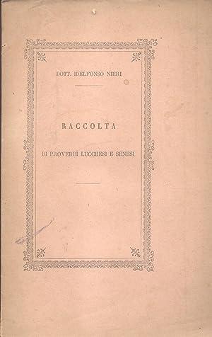 RACCOLTA DI PROVERBI LUCCHESI E SENESI.: NIERI Idelfonso.