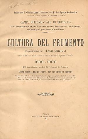 CULTURA DEL FRUMENTO. Esperimenti 1899-1900, XIII anno di cultura continua del Frumento e Granturco...