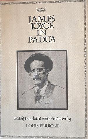 James Joyce in Padua: Berrone, Louis, Editor