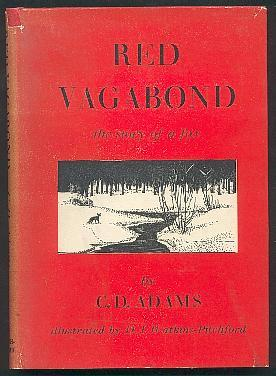 Red Vagabond, the Story of a Fox: Adams, C.D., Illustrated