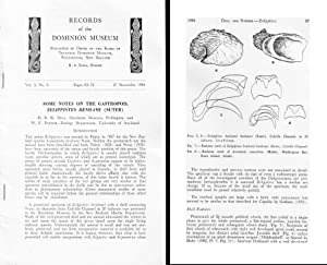 Some notes on the gastropod, Zelippistes benhami: DELL R.K.,